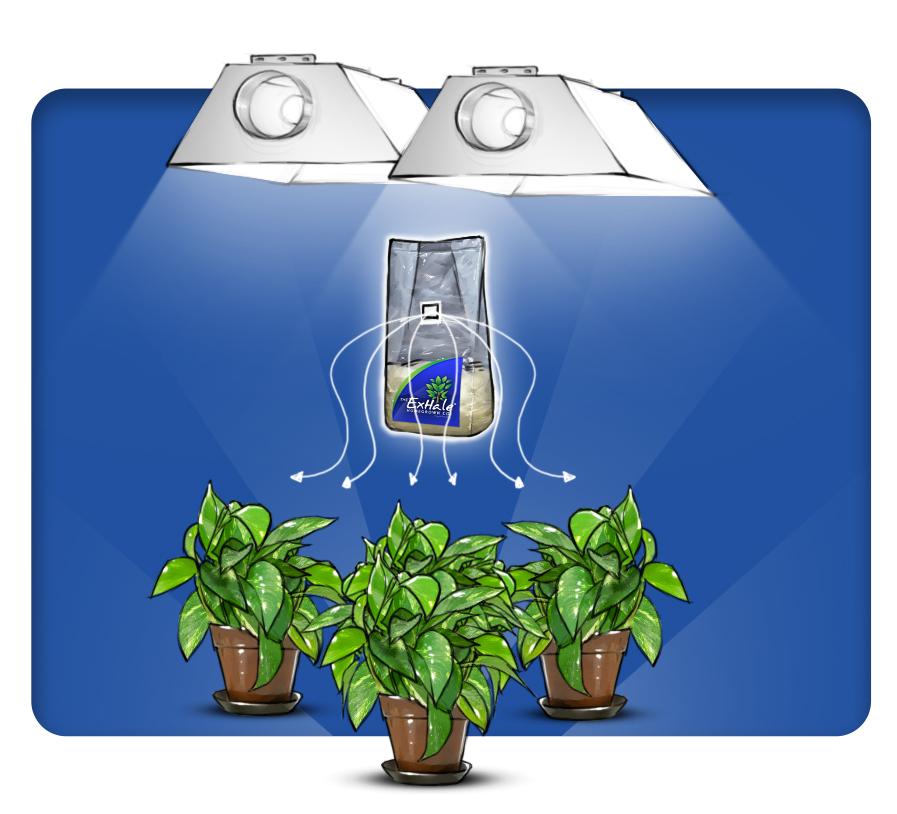Co2 генератор для растений
