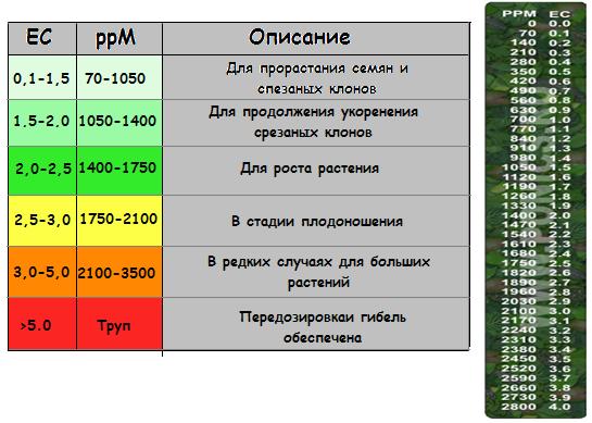 Как перевести ppm? / Беседы переводчиков [ActualForum