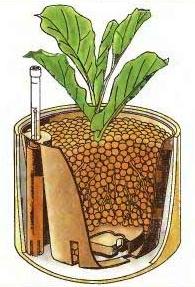 home-hydroponics-2