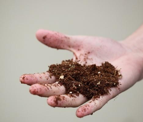Определение кислотности почв